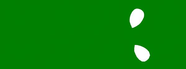 Major Micros Microgreens Roanoke VA